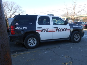 Rye Police  Photo By: Pamela Stern